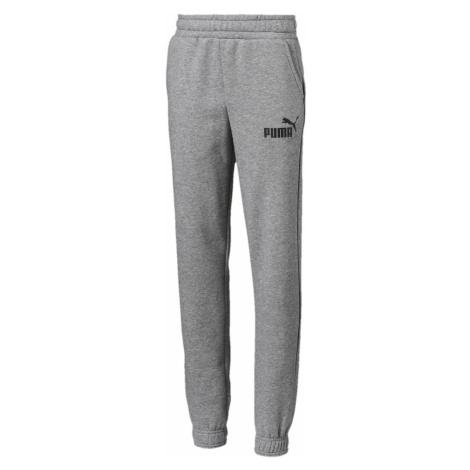Puma Essentials Kids joggings Grey