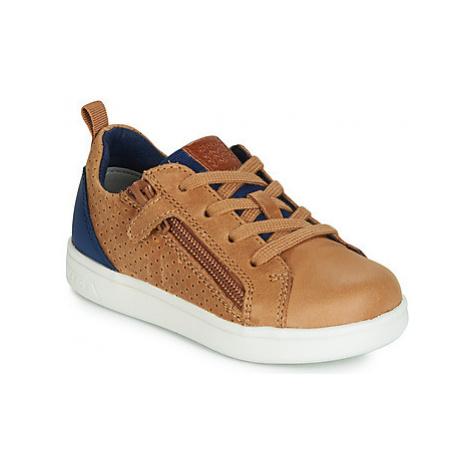 Geox B DJROCK BOY boys's Children's Shoes (Trainers) in Brown