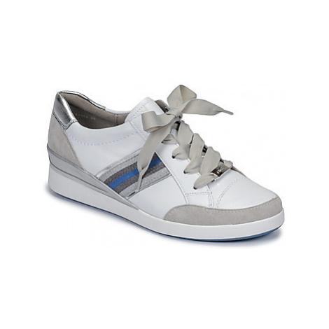 Ara LAZIO women's Shoes (Trainers) in White