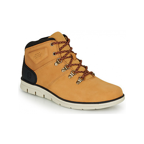 Timberland BRADSTREET HIKER men's Shoes (High-top Trainers) in Brown