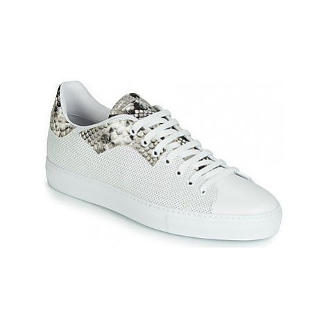 Roberto Cavalli 6613 men's Shoes (Trainers) in White