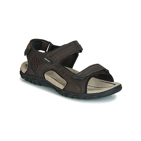 Geox UOMO SANDAL STRADA men's Sandals in Brown
