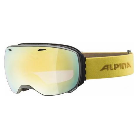 Alpina Sports BIG HORN HM gray - Unisex downhill ski goggles