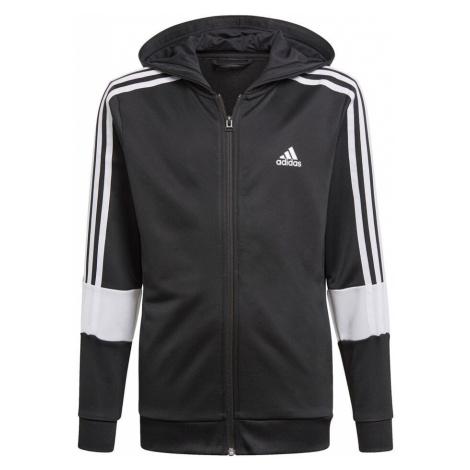Boys' sports sweatshirts and hoodies Adidas