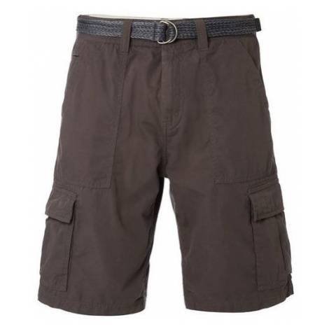 O'Neill LM BEACH BREAK SHORTS brown - Men's shorts