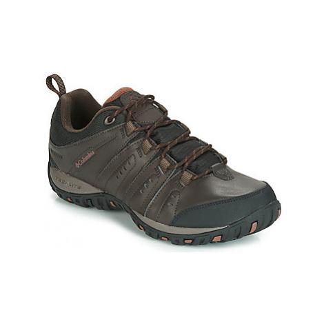 Columbia WOODBURN II WATERPROOF men's Sports Trainers (Shoes) in Brown