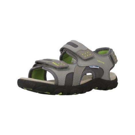 Geox JR SANDAL STRADA boys's Children's Sandals in Grey