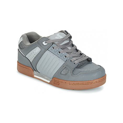 DVS CELSIUS men's Shoes (Trainers) in Grey