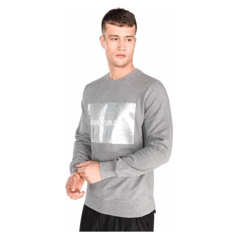 Calvin Klein Sweatshirt Grey