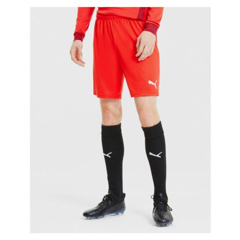 Puma teamGOAL 23 Shorts Red