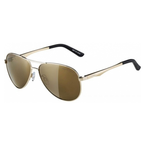 Alpina Sports A 107 yellow - Unisex sunglasses