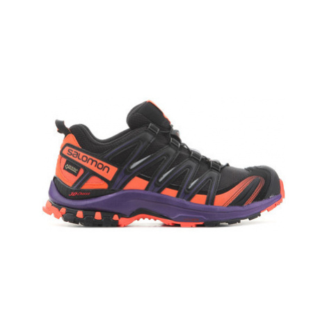 Salomon XA Pro 3D GTX LTD W 401773 women's Running Trainers in Multicolour