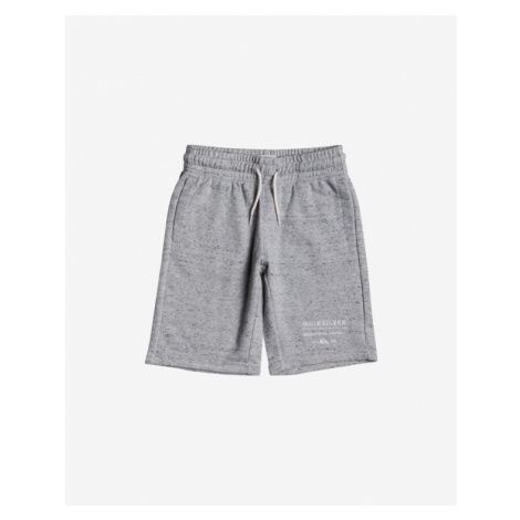 Quiksilver Easy Day Kids Shorts Grey
