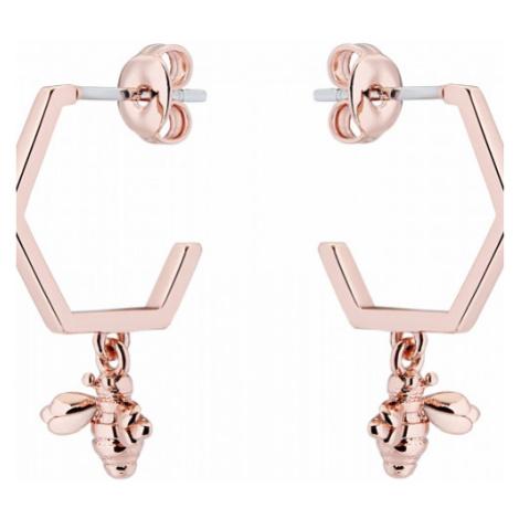 Ted Baker Jewellery Bedza Earrings TBJ2243-24-03