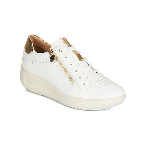 Stonefly ROCK 4 NAPPA women's Shoes (Trainers) in White