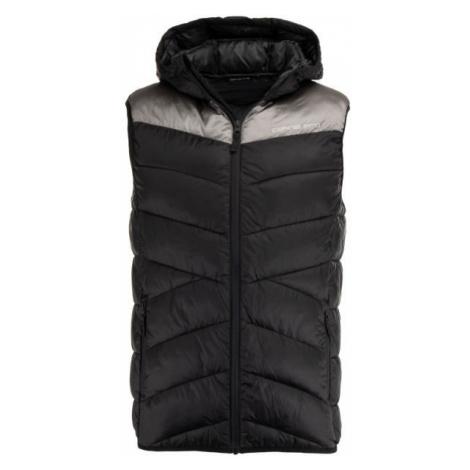 ALPINE PRO PURR - Men's quilted vest
