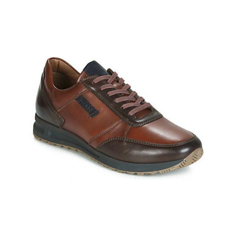 Josef Seibel THADDEUS 07 men's Shoes (Trainers) in Brown