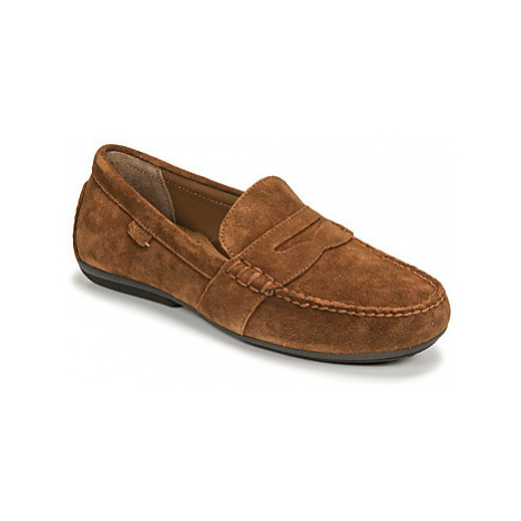 Polo Ralph Lauren REYNOLD men's Loafers / Casual Shoes in Brown