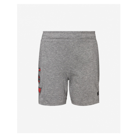 Puma Alpha Summer Kids Shorts Grey