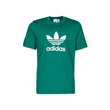 Adidas TREFOIL T-SHIRT men's T shirt in Green