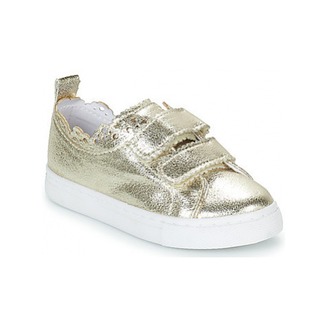Gioseppo CESENA girls's Children's Shoes (Trainers) in Gold