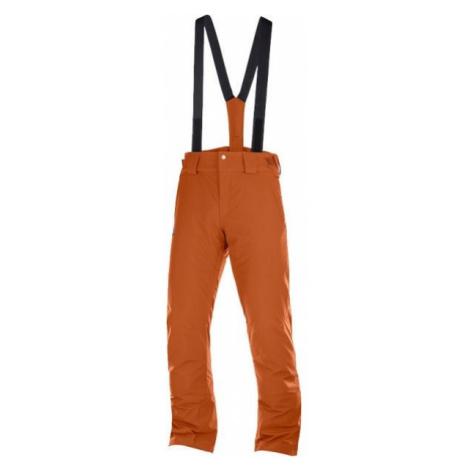 Salomon STORMSEASON brown - Men's ski pants