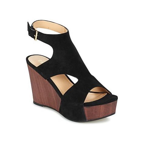 Café Noir FRATTA women's Sandals in Black