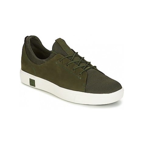 Timberland AMHERST LTHR LTT SNEAKER men's Shoes (Trainers) in Green