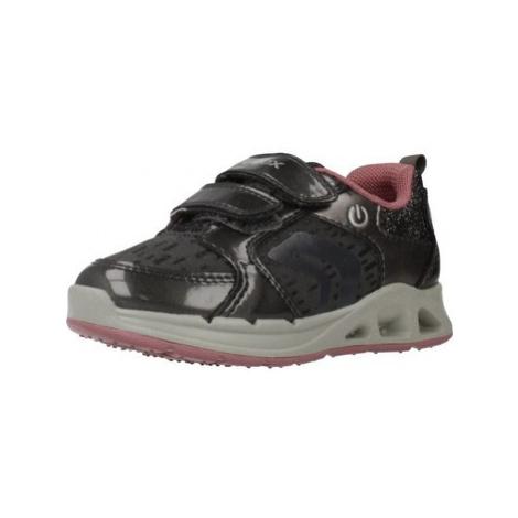 Geox B DAKIN GIRL girls's Children's Shoes (Trainers) in Grey