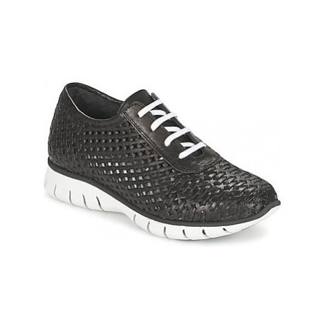 Felmini WILOLA women's Shoes (Trainers) in Black