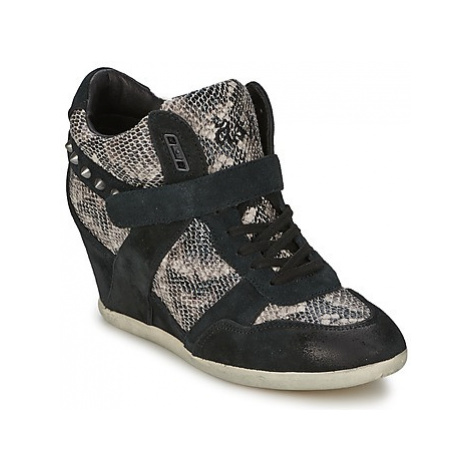 Ash BISOU women's Shoes (High-top Trainers) in Black