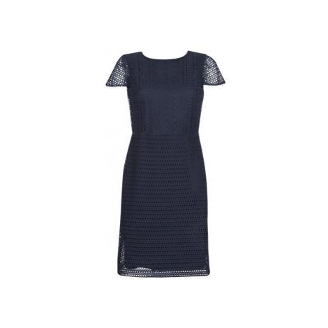 Lauren Ralph Lauren NAVY SHORT SLEEVE DAY DRESS women's Dress in Blue