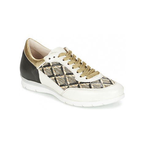 Mjus FORCE women's Shoes (Trainers) in Gold