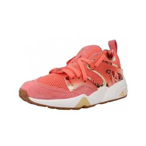 Puma BOG X CAREAUX GRAPHIC women's Shoes (Trainers) in Pink