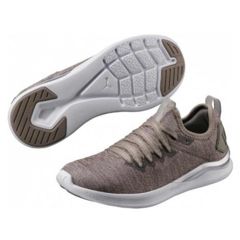 Puma IGNITE FLASH EVOKNIT W brown - Women's leisure footwear