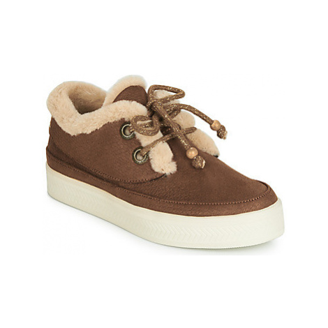 Armistice SONAR INDIAN women's Shoes (Trainers) in Brown