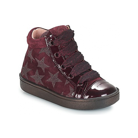 Acebo's MASSA girls's Children's Shoes (High-top Trainers) in Bordeaux