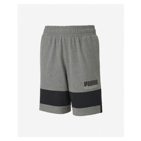 Puma Alpha Kids shorts Grey