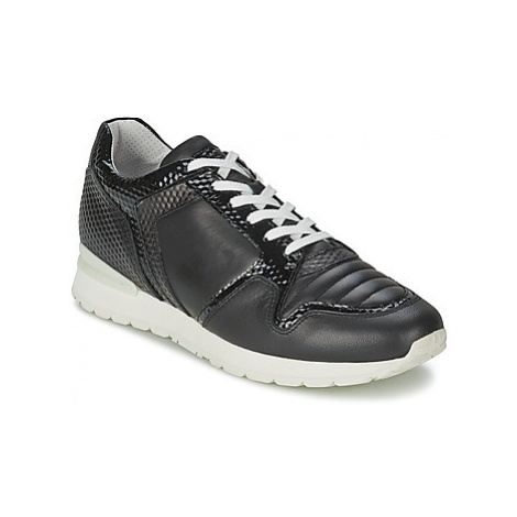 Bikkembergs KATE 420 women's Shoes (Trainers) in Black