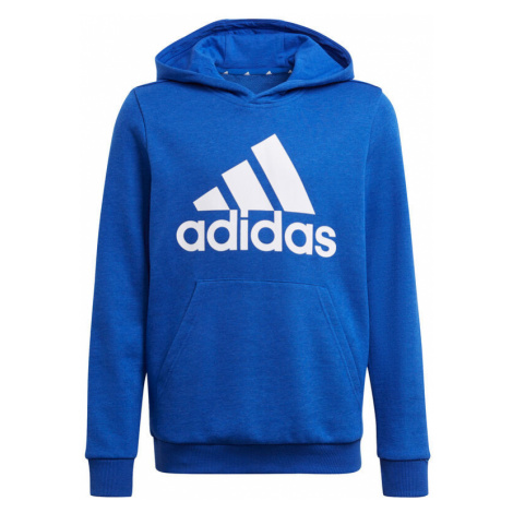 Essentials Big Logo Hoody Men Adidas