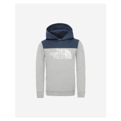 The North Face Drew Peak Kids Sweatshirt Grey