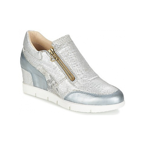 Mjus TRENTA women's Shoes (Trainers) in Grey