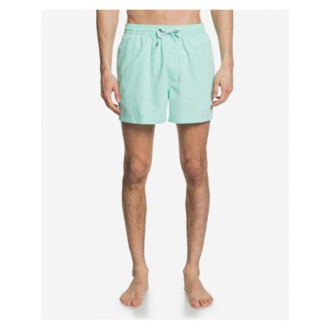 Quiksilver Everyday Swimsuit Green