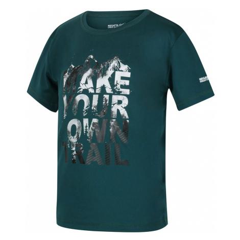 Regatta Kids Alvarado V T-Shirt-Deep Teal-13 Years