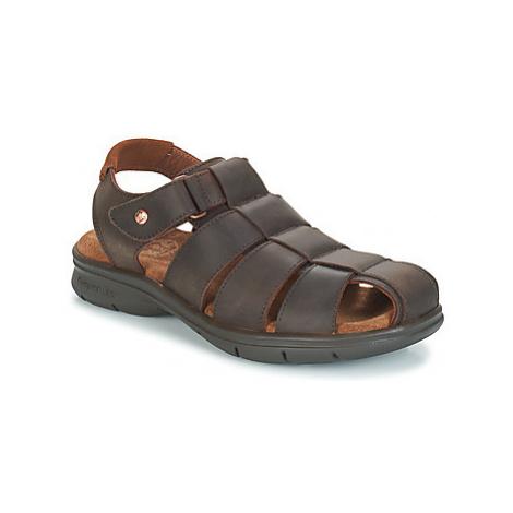 Panama Jack SAURON men's Sandals in Brown