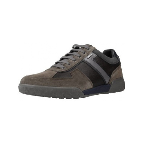 Geox U REDWARD B ABX men's Shoes (Trainers) in Brown