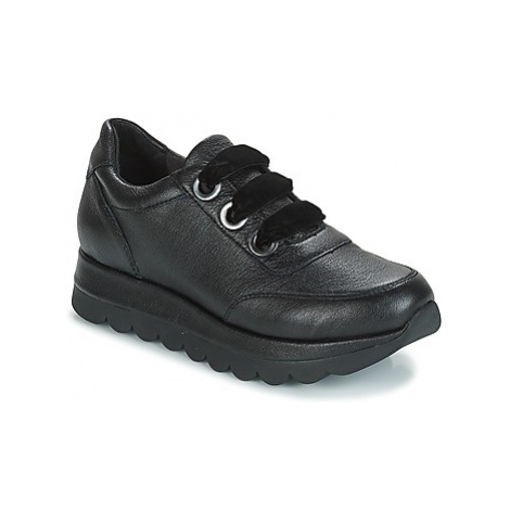 Café Noir SEHINA women's Shoes (Trainers) in Black