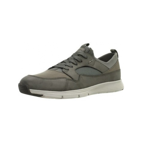 Geox U SNAPISH men's Shoes (Trainers) in Grey