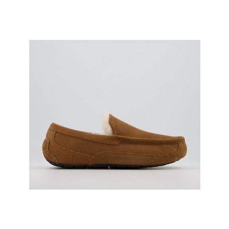 UGG Ascot Slippers CHESTNUT
