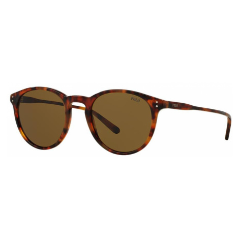 Polo Ralph Lauren Man PH4110 - Frame color: Tortoise, Lens color: Brown, Size 50-21/145